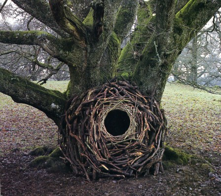 Andy Goldsworthy le nid.jpg