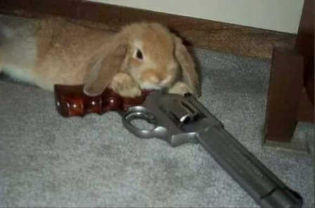mort lapin assassin.png