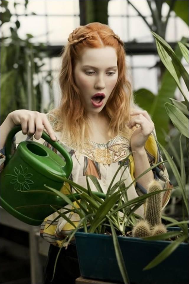 il faut cultiver son jardin - Bretzel liquide, humour noir et photos  étranges