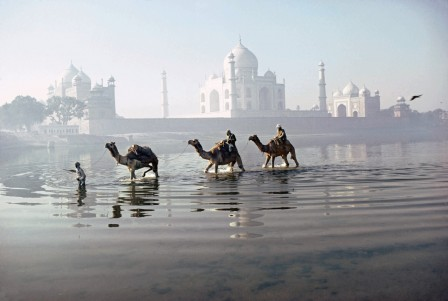 Roland_et_Sabrina_Michaud_Camels_crossing_the_river_Yamuna_Agra_Uttar_Pradesh_1981.jpg