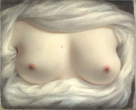 Sarah Goodridge Beauty Revealed The Metropolitan Museum of Art 1828.png