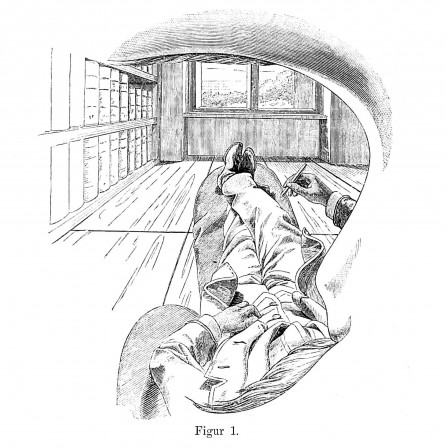 Self-Portrait View from the Left Eye by Ernst Mach 1886 l'autoportrait dessine-toi toi-même.jpg, fév. 2021
