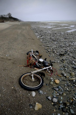 A_Harley-Davidson_motorbike_lies_on_a_beach_in_Graham_Island.jpg