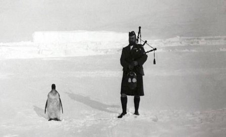 A member of the Scottish National Antarctic Expedition plays the bagpipes for a penguin 1904.jpg